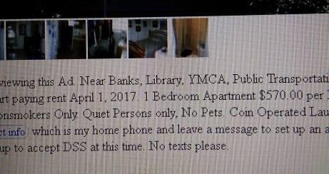 pets no no